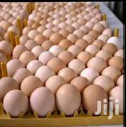 Eggs For Sale | Meals & Drinks for sale in Greater Accra, Accra Metropolitan
