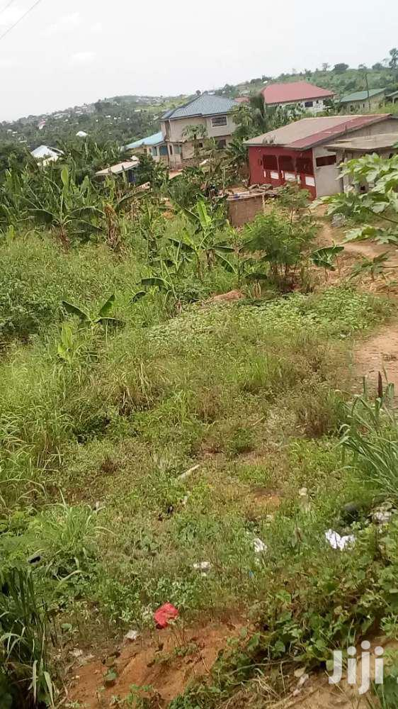 Archive: Land For Sale At Very Cheap And Affordable Price At Nsawam
