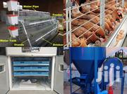 Poultry Cage System | Farm Machinery & Equipment for sale in Greater Accra, Ga South Municipal