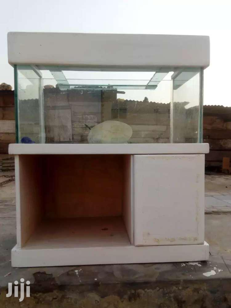 Aquarium | Fish for sale in Nungua East, Greater Accra, Ghana