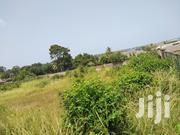 Litigation Free Lands for Sale.   Land & Plots For Sale for sale in Western Region, Shama Ahanta East Metropolitan