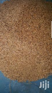 Dried Neem Seeds | Feeds, Supplements & Seeds for sale in Northern Region, Tamale Municipal