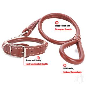 Dogs Leather Lead/Leash With Collar