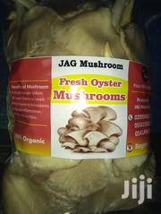 Fresh And Dried Organic Oyster Mushroom | Meals & Drinks for sale in Eastern Region, Fanteakwa
