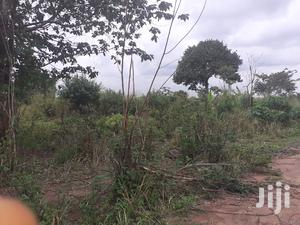 15 Acres of Farm Land   Land & Plots For Sale for sale in Brong Ahafo, Sunyani Municipal