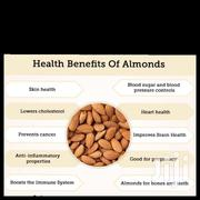 Sweet Almond Seeds 100g | Feeds, Supplements & Seeds for sale in Northern Region, Tamale Municipal