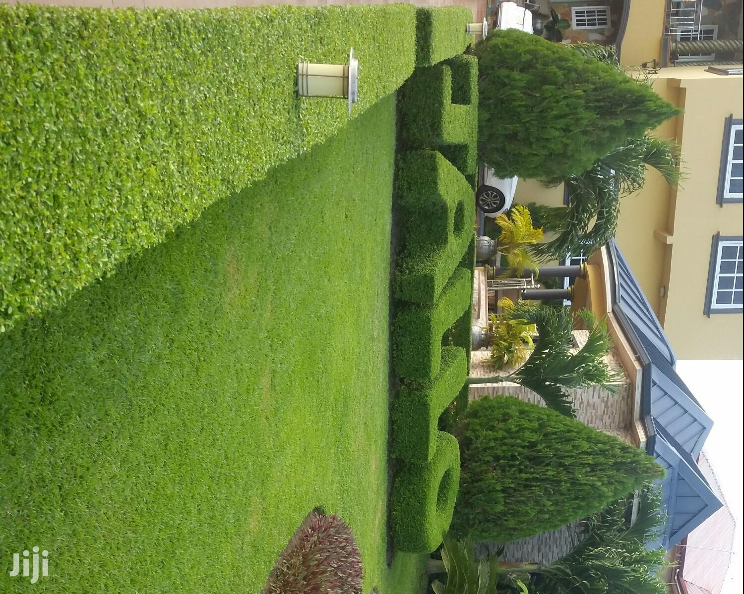 Landscaping Expect | Landscaping & Gardening Services for sale in Ga South Municipal, Greater Accra, Ghana