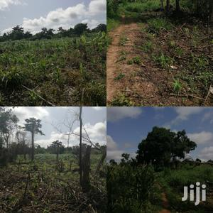 1,500 Acres of Farmland at Nsawam Teacher Mante.GH¢29,000/Acre   Land & Plots For Sale for sale in Eastern Region, Akuapim South