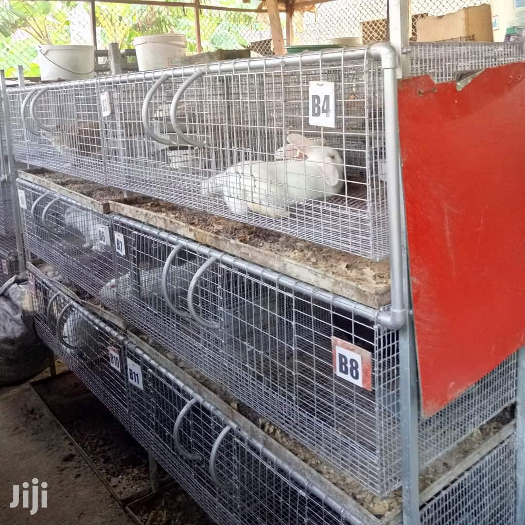 Rabbits Cage | Farm Machinery & Equipment for sale in East Legon, Greater Accra, Ghana