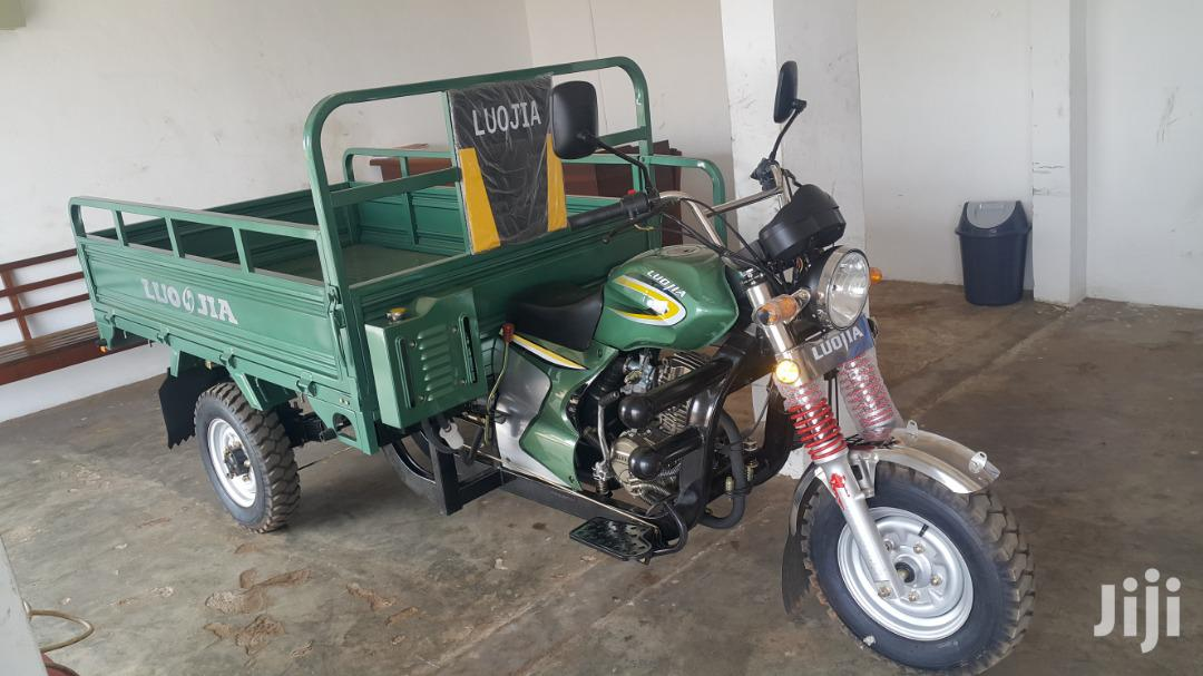 New Luojia Cargo Tricycle 2020 Blue