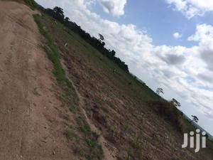 Titled Affordable Land for Sale at Kasoa