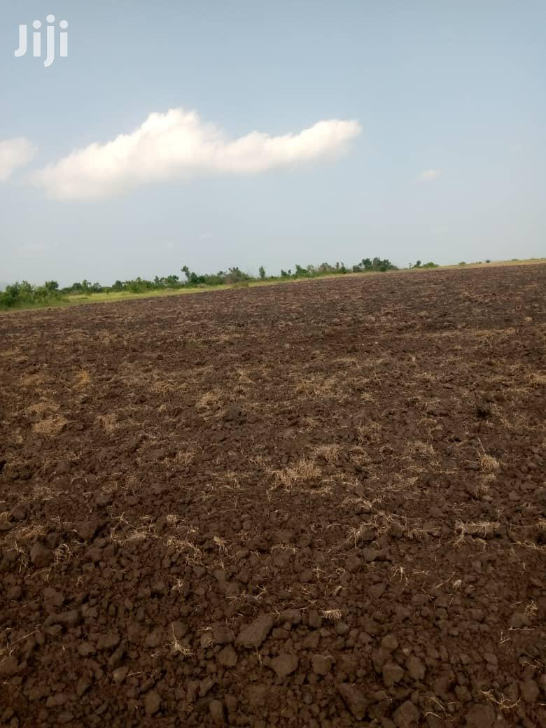 Farmland For Sale At Asutsuarea, Tema Akosombo. 30,000   Land & Plots For Sale for sale in East Legon, Greater Accra, Ghana