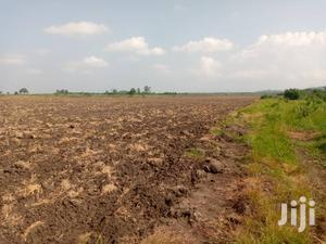 Farmland For Sale At Asutsuarea, Tema Akosombo. 30,000   Land & Plots For Sale for sale in Greater Accra, East Legon