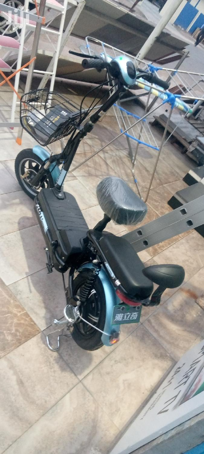 Electric Bicycle Chinese