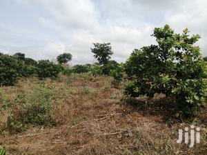Farmland At Nkoranza For Sale. Per Acre   Land & Plots For Sale for sale in Brong Ahafo, Nkoranza North