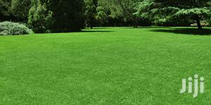 Lawn & Landscaping Services