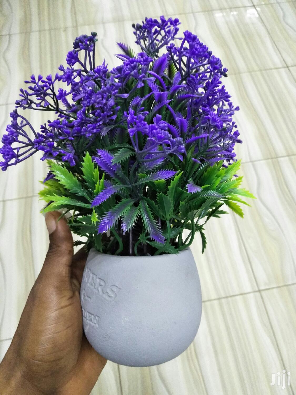 Flower Pots For Sale | Garden for sale in Tema Metropolitan, Greater Accra, Ghana