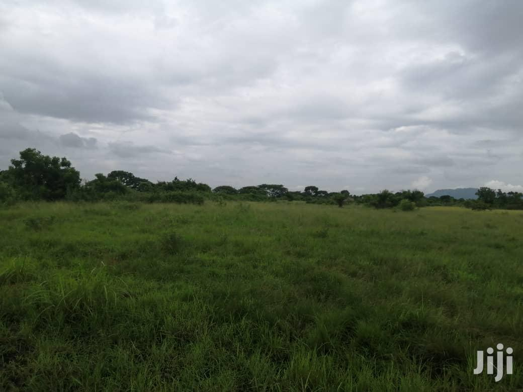 10.000 Acres Of Farm Land For Lease | Land & Plots for Rent for sale in South Shiashie, Greater Accra, Ghana