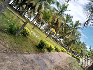 LA Plage Events Center | Event centres, Venues and Workstations for sale in Greater Accra, Nungua