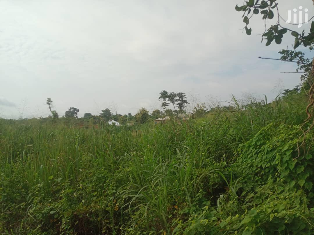 Plot of Land for Sale | Land & Plots For Sale for sale in Sunyani Municipal, Brong Ahafo, Ghana