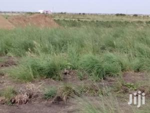 Affordable Land for Sale at New Bortianor