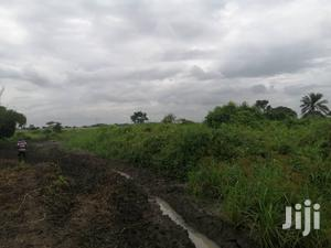 Farm Land For Long Lease   Land & Plots for Rent for sale in Eastern Region, Asuogyaman
