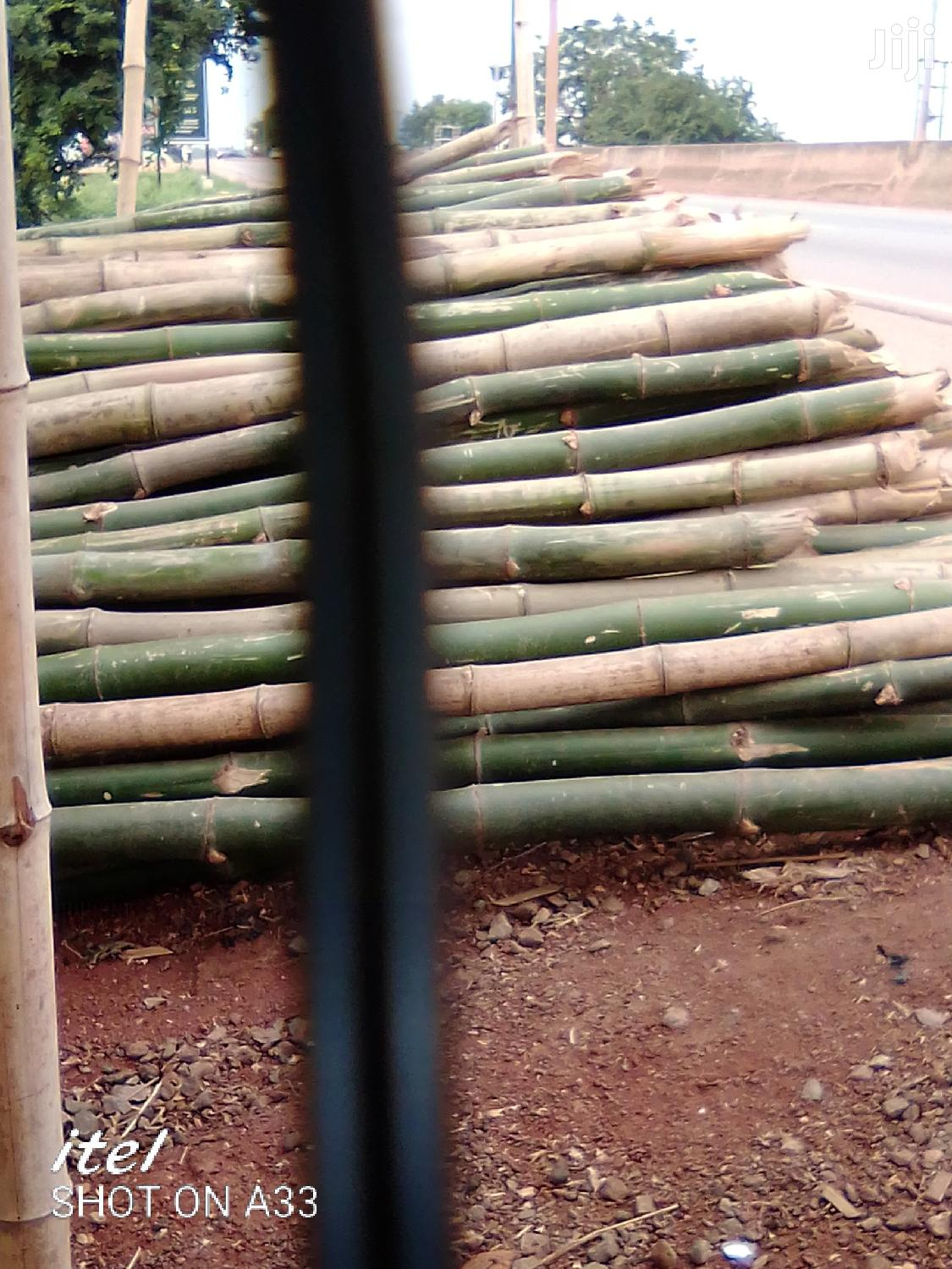Fresh Bamboo For Sale   Building Materials for sale in Adenta Municipal, Greater Accra, Ghana