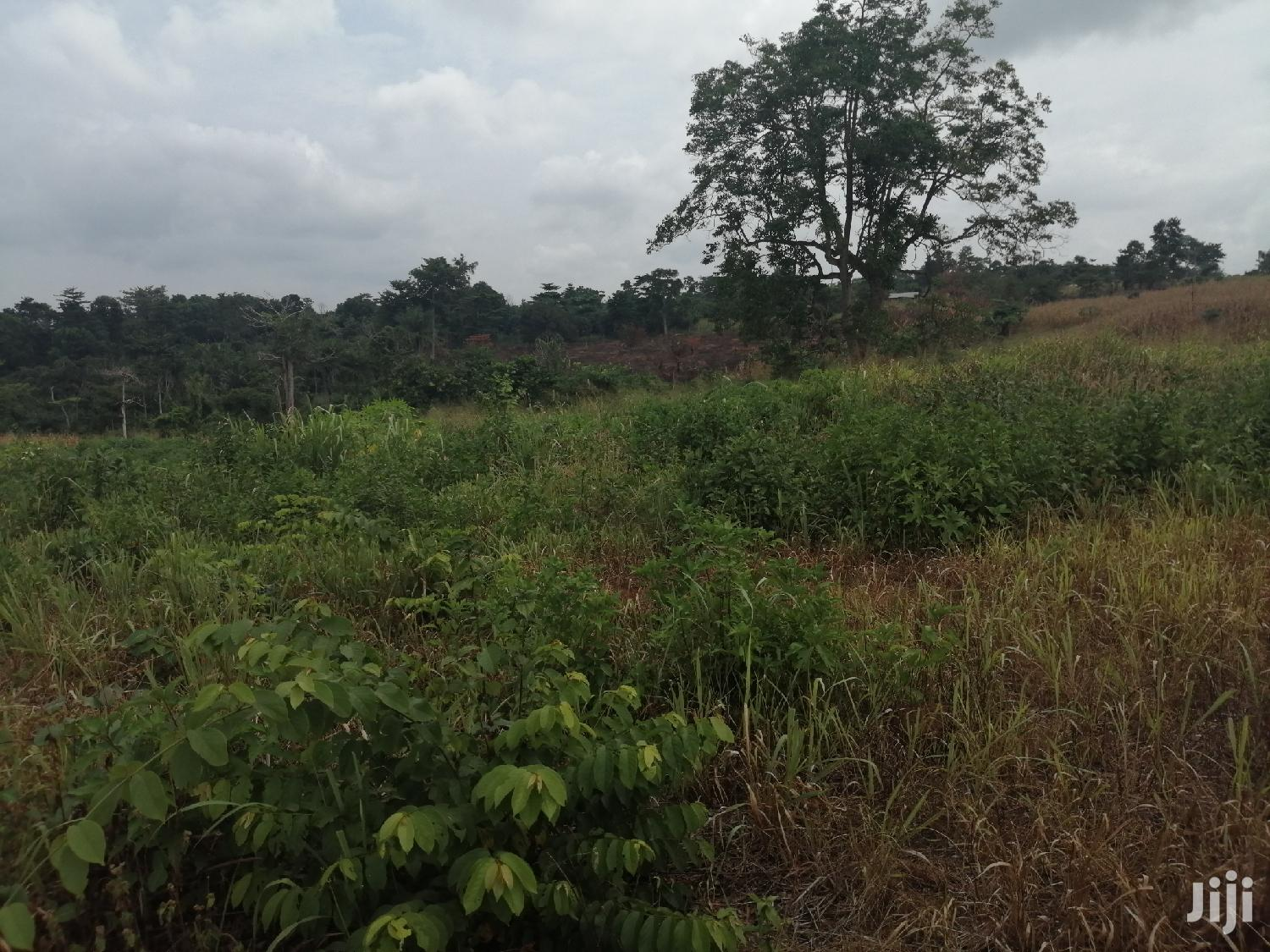 Archive: 15 Acres Of Farmland At Wawasua For Sale