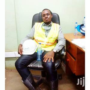 Surveyor (Valuer) | Mining Industry CVs for sale in Ashanti, Kumasi Metropolitan