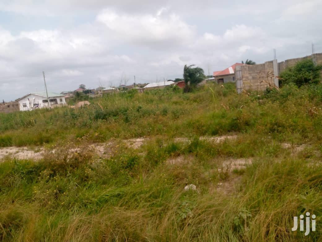 Free Land for Any Investor
