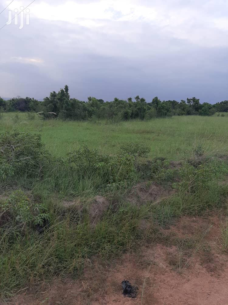 Land For Sale | Land & Plots For Sale for sale in Adenta Municipal, Greater Accra, Ghana