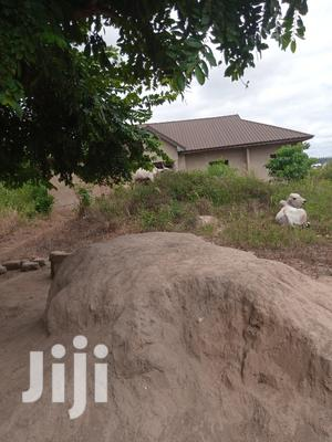 Hot Cake Land for Sale in Fiapre B/A | Land & Plots For Sale for sale in Brong Ahafo, Sunyani Municipal