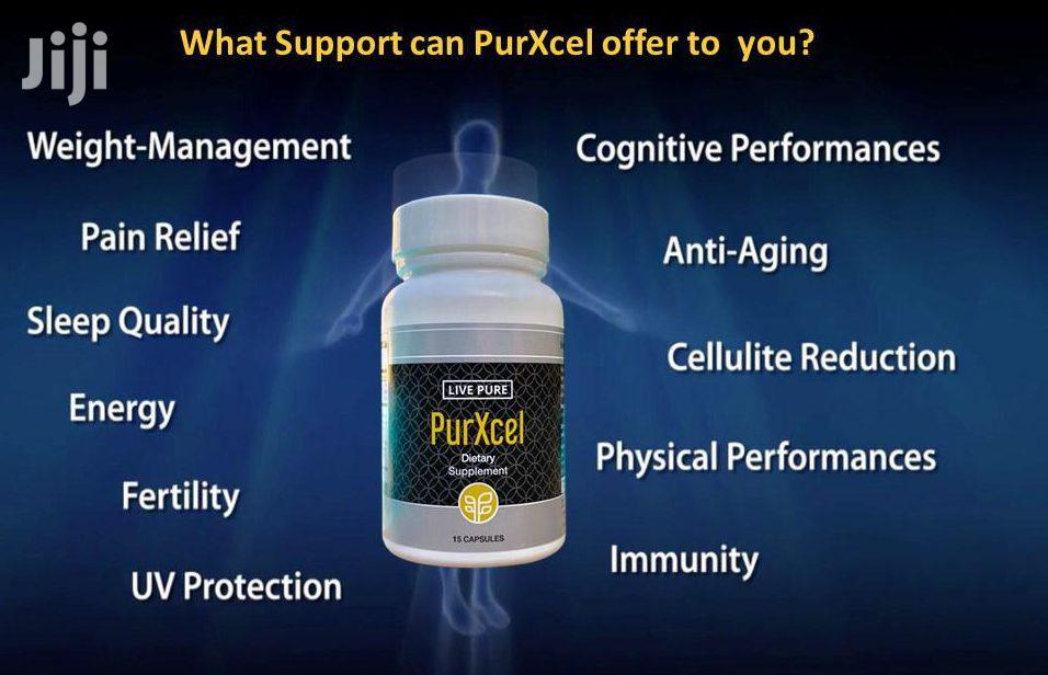 Archive: Livepure Purxcel – Diabetes,Glaucoma,Cataracts (30 Capsules)