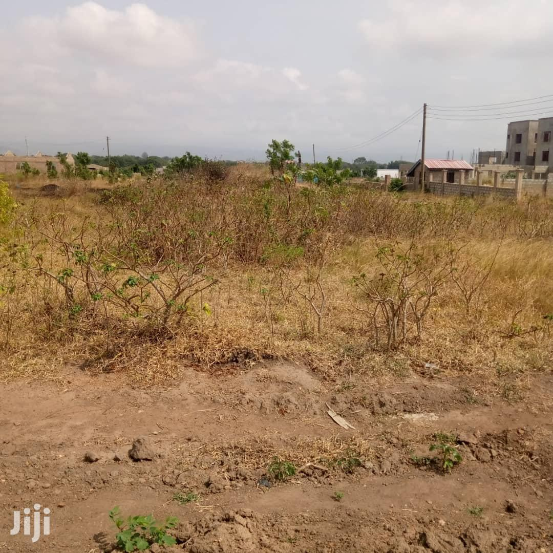 Archive: One Plot of Land for Sale at Apollonia City.