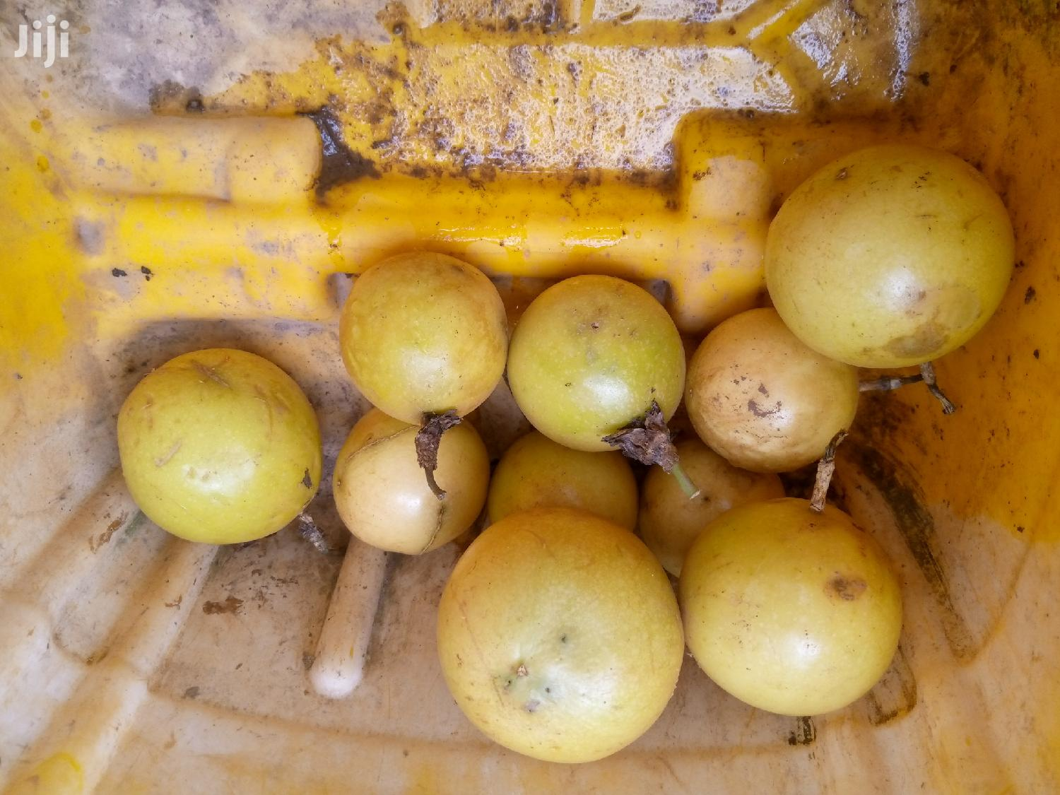 Passion Fruit Seedlings For Sale | Feeds, Supplements & Seeds for sale in Ahafo Ano South, Ashanti, Ghana