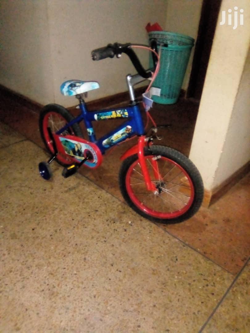 Beautiful Easy to Handle Bicycle
