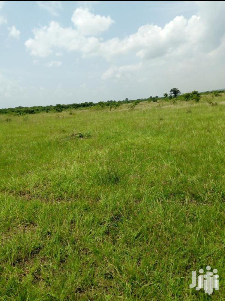 Land for Sale No Agent