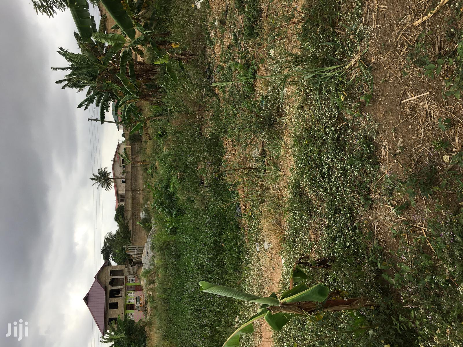 Archive: One Plot of Land for Sale