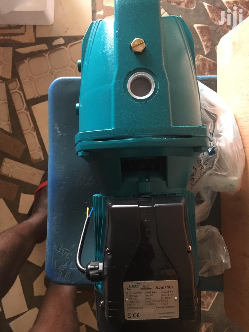 Leo Electric Water Pump