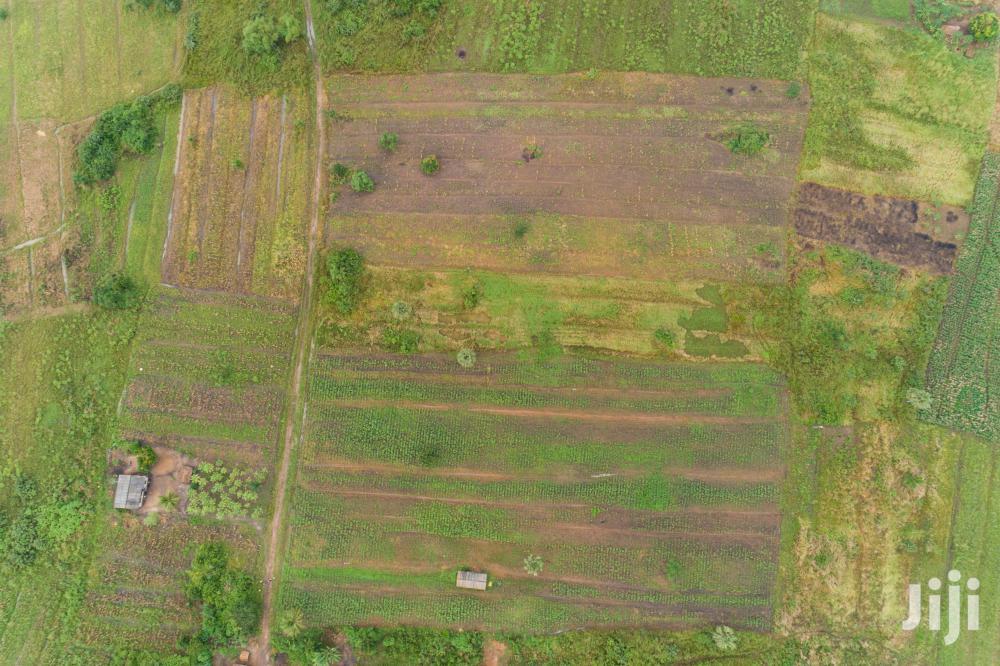 26 Acre Farmland for Sale | Land & Plots For Sale for sale in Akatsi Notrh, Volta Region, Ghana