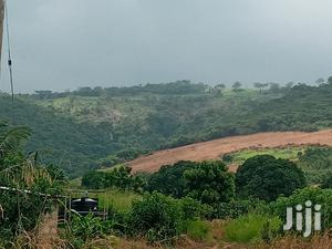 298 Acres of Farmland for Sale at a Cheaper Price   Land & Plots For Sale for sale in Eastern Region, Suhum/Kraboa/Coaltar