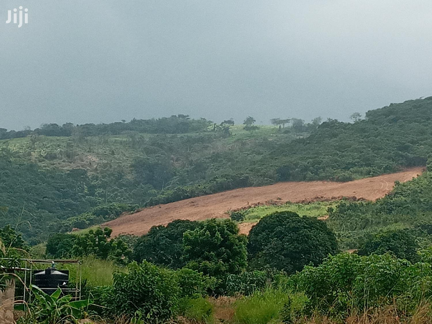 298 Acres Of Farmland For Sale At A Cheaper Price   Land & Plots For Sale for sale in Suhum/Kraboa/Coaltar, Eastern Region, Ghana