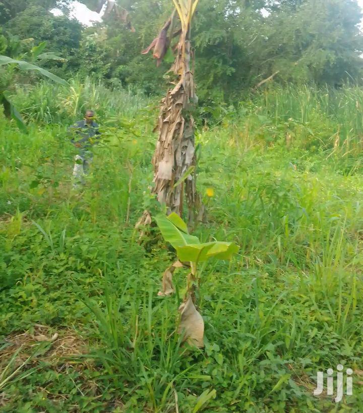 Land For Sale | Land & Plots For Sale for sale in Gomoa East, Central Region, Ghana