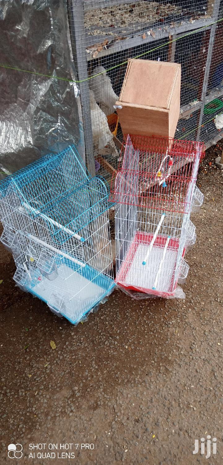 Parrot Cages | Pet's Accessories for sale in Tema Metropolitan, Greater Accra, Ghana