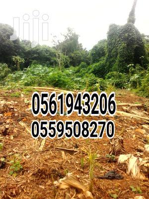 Farmland Selling!   Land & Plots For Sale for sale in Western Region, Bibiani/Anhwiaso/Bekwai