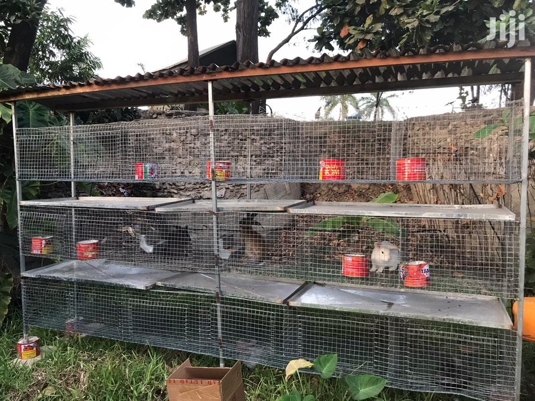 Rabbits Cage For Sale | Farm Machinery & Equipment for sale in Adenta Municipal, Greater Accra, Ghana