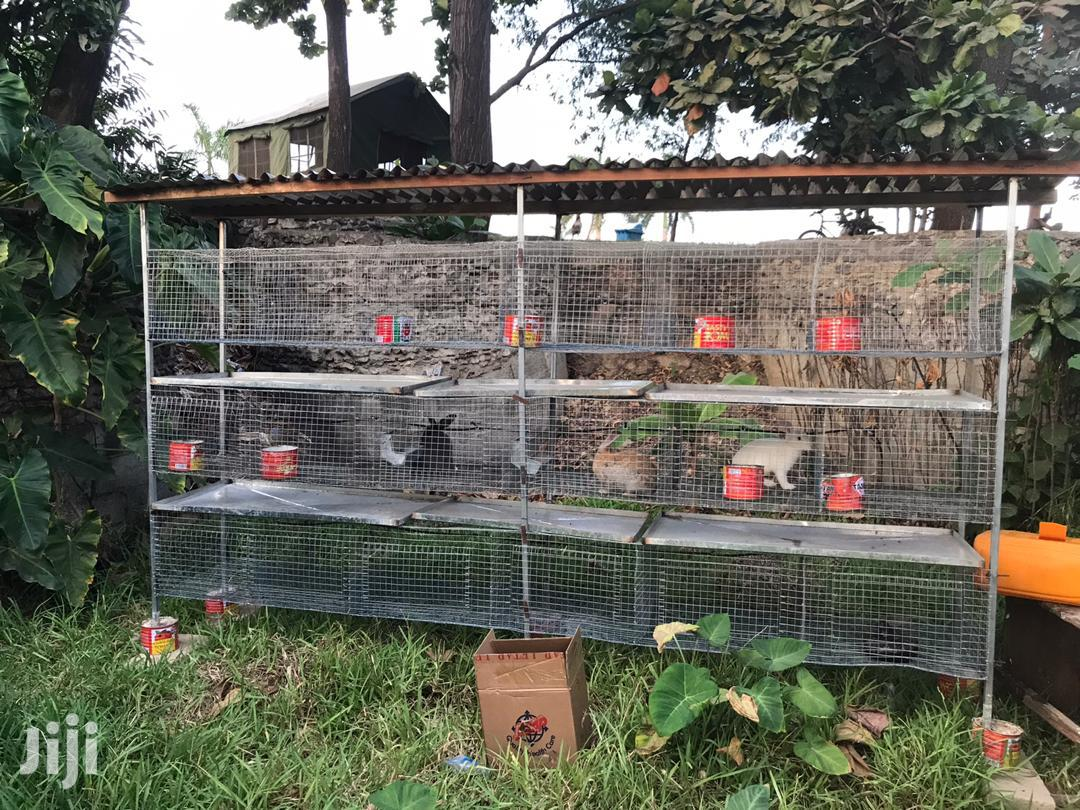 Rabbits Cage For Sale