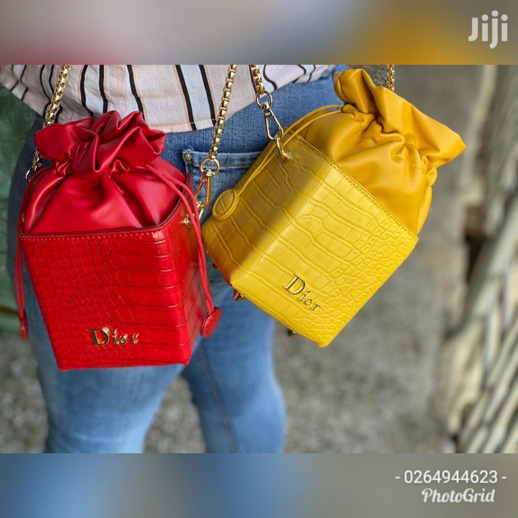 Dior Ladies Bag