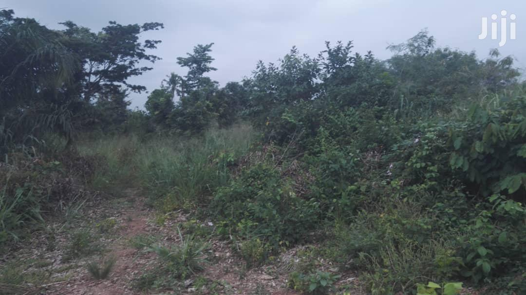 One Plot of Land for Sale at Kuntuse