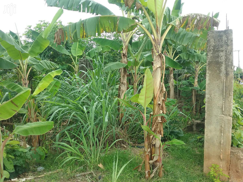 2 Plots of Land for Sale at Asuoyeboah Tanoso | Land & Plots For Sale for sale in Kumasi Metropolitan, Ashanti, Ghana